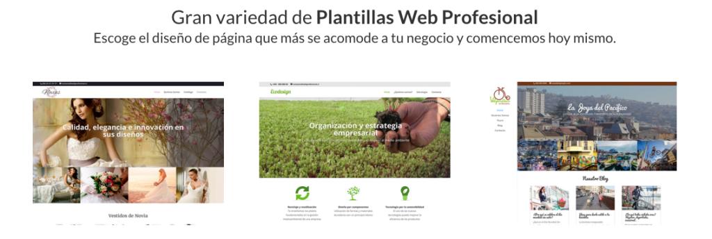 Plantillas web profesional
