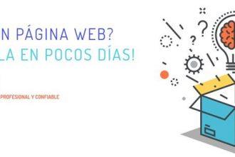 Web Profesional