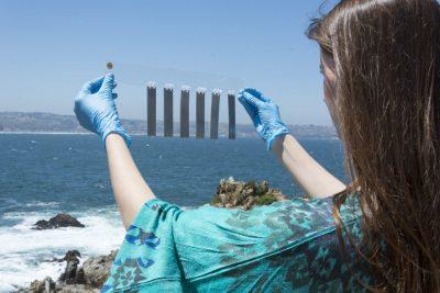 energías marinas